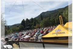 Paraplegici Livorno raduno Garlenda conegna fiat 500_00014