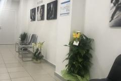 paraplegici-livornoinaugurazione-nuova-sede-00011